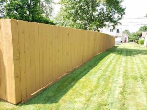 Fence Restoration Project 02